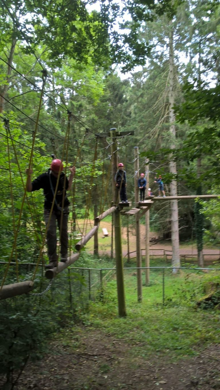 Scouts At Tree Top Adventures