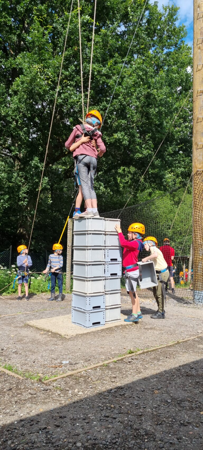 Read more about the article Crate Challenge – Cubs Activity Days
